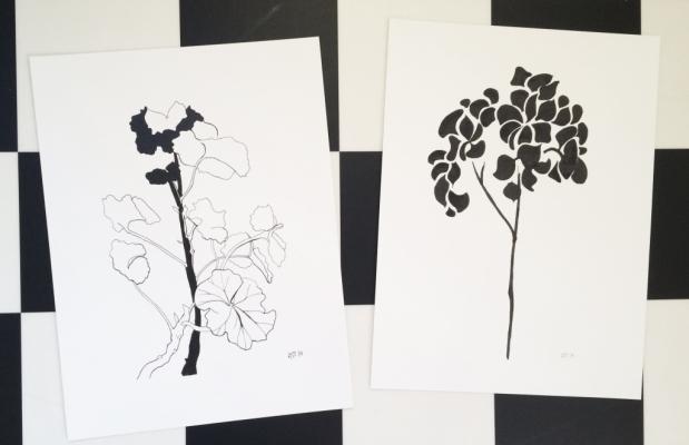 Printade på Västkustens tryckeri på finaste konstpapper. Finns att köpa av mig eller på Moltaz Design.